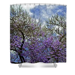 Jacaranda Shower Curtain