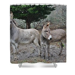 Jack And Jenny Shower Curtain