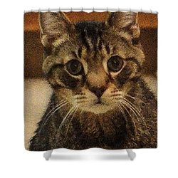 Jack Shower Curtain by Guy Whiteley