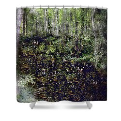 Jack Kell's Woods Shower Curtain by RC DeWinter