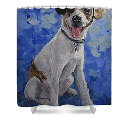 Jackaroo - A Pet Portrait Shower Curtain by Karen Ilari