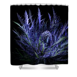 Jackpot Blue Thistle Shower Curtain