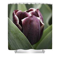 Jackpot Tulip Shower Curtain