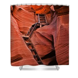 Jacob's Ladder Shower Curtain by Mike  Dawson