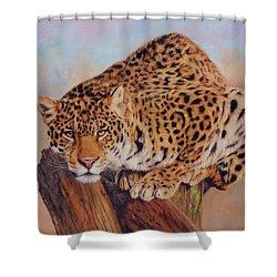 Jaguar Shower Curtain by David Stribbling