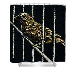 Jail Break Shower Curtain