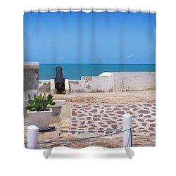 Jamestown Watch Shower Curtain