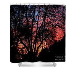 Shower Curtain featuring the photograph January Dawn by Luther Fine Art