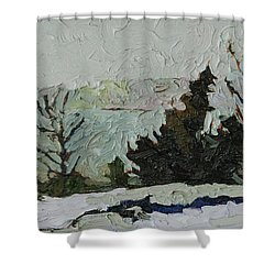 January Grays Shower Curtain by Phil Chadwick