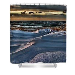 January Saugatuck Blues Michigan Shower Curtain