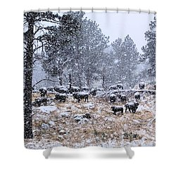 January Snow Shower Curtain