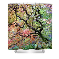 Shower Curtain featuring the photograph Japanese Maple by Wendy McKennon