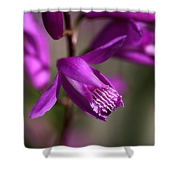 Shower Curtain featuring the photograph Japanese Orchid by Joy Watson