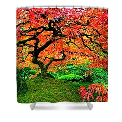 Japanese Red Maple Shower Curtain