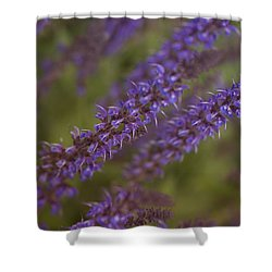 Jardin De Rue Shower Curtain