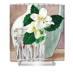 Jasmine Shower Curtain by Irina Sztukowski