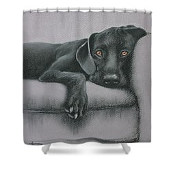 Shower Curtain featuring the drawing Jasper by Cynthia House