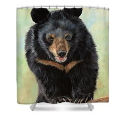 Jasper Moon Bear - In Support Of Animals Asia Shower Curtain