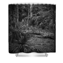 Jb Starkey Number 2 Shower Curtain by Phil Penne