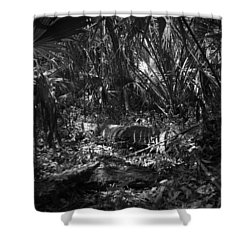 Jb Starkey Number One Shower Curtain by Phil Penne