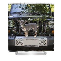 Jeep Dog Shower Curtain by Edward Fielding