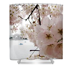 Shower Curtain featuring the photograph Jefferson Memorial by Jennifer Wheatley Wolf