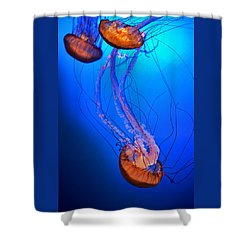 Jelly #1 Shower Curtain