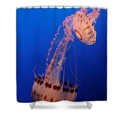 Jelly And Fishy Shower Curtain