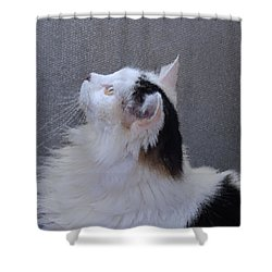 Shower Curtain featuring the digital art Jenny In The Light by Aliceann Carlton
