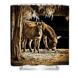 Jenny N Jack Shower Curtain by Robert Geary