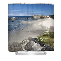 Jessie Honeyman Memorial State Park Shower Curtain by Peter French