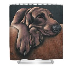 Shower Curtain featuring the pastel Jethro by Cynthia House