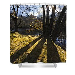 Jewel In The Trees Shower Curtain by Debra and Dave Vanderlaan