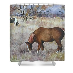 Jill's Horses On A November Day Shower Curtain