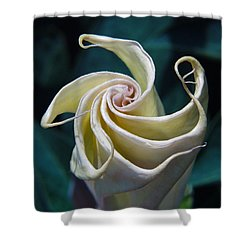 Jimsonweed Flower Spiral Shower Curtain
