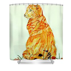 Shower Curtain featuring the drawing Jinj by Stephanie Grant