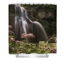 Joe Pye Weed For Pat Shower Curtain