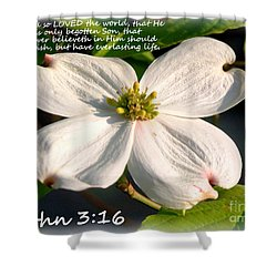 John 3-16/dogwood Legend Shower Curtain