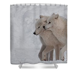 Shower Curtain featuring the photograph Joined At The Hip by Bianca Nadeau