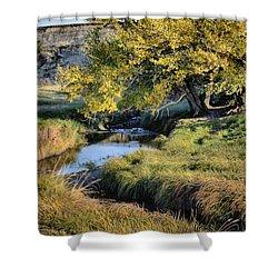 Jordan Creek Autumn Shower Curtain by Bruce Morrison
