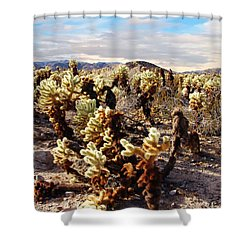 Joshua Tree National Park 3 Shower Curtain