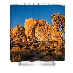 Joshua Tree Sunset Glow Shower Curtain