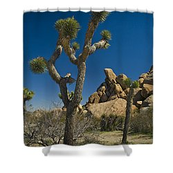 California Joshua Trees In Joshua Tree National Park By The Mojave Desert Shower Curtain by Randall Nyhof
