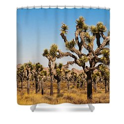 Joshua Trees  Shower Curtain by Penny Lisowski