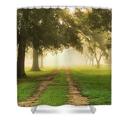 Journey Into Fall Shower Curtain by Charlotte Schafer