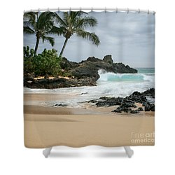 Journey Of Discovery  Shower Curtain by Sharon Mau
