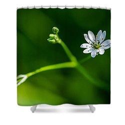 Joy Of Life - Featured 3 Shower Curtain by Alexander Senin