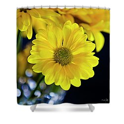 Joy Shower Curtain by Scott Pellegrin