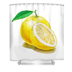 Shower Curtain featuring the painting Juicy Grapefruit by Irina Sztukowski