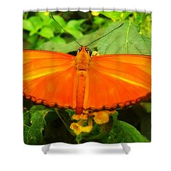 Julia Shower Curtain by Clare Bevan